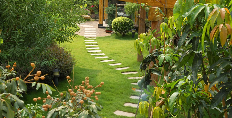 8 Free Garden And Landscape Design Software | The Self Sufficient Living