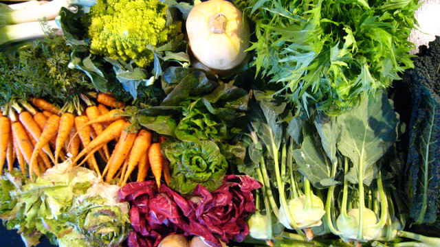 vegetables-to-grow-in-winter