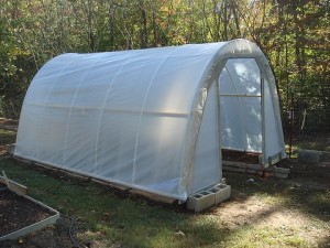 $50 Greenhouse Plan