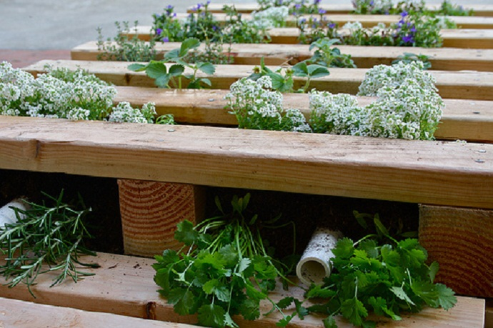 25 inspiring pallet garden and furniture ideas the self for Pallet veggie garden