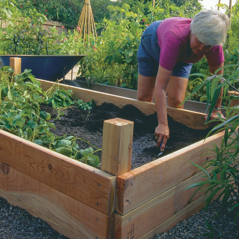 Redwood simple raising bed