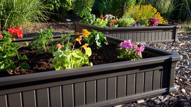 Raised Bed Garden Design Pictures. Spiral Raised Bed. Raised