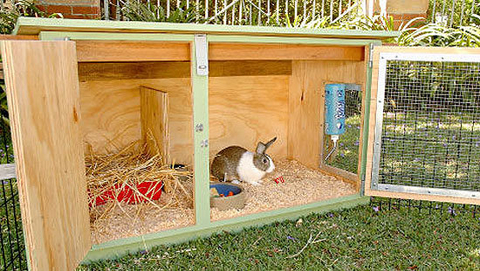 Homemade Outdoor Rabbit Hutch