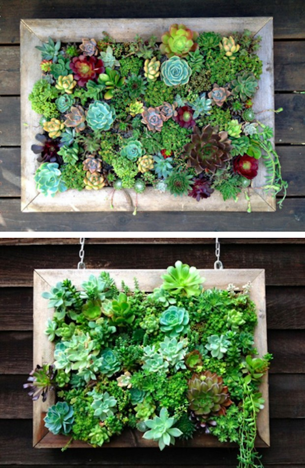 15 inspiring and creative vertical gardening ideas and for Vertical garden designs