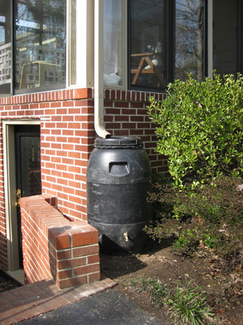 Portable rain barrel