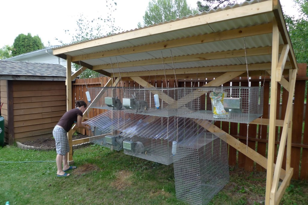 10 Free Rabbit Hutch Building Plans and Designs | The Self-Sufficient ...