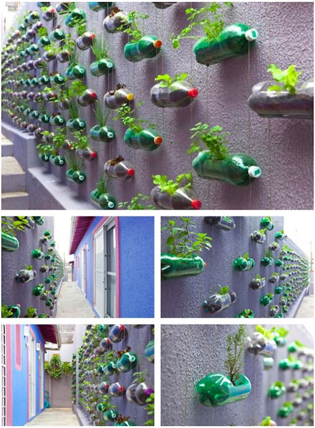 Exceptional Soda Bottles As Vertical Garden Planters