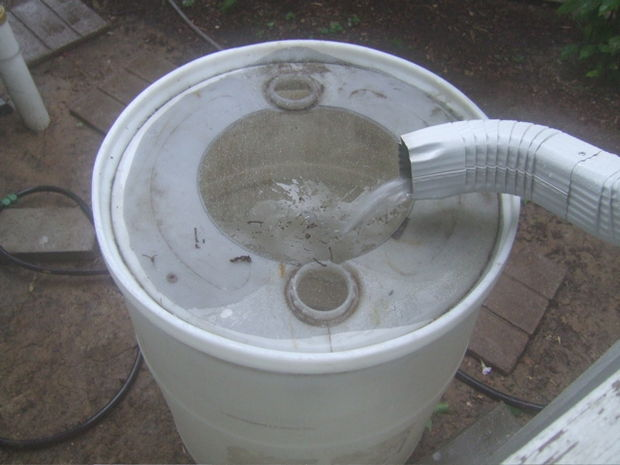 10 best diy rain barrel harvest rain water for garden for First flush diverter plans