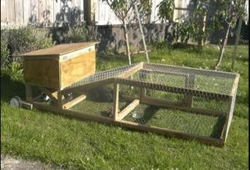 portable homestead for rabbits.