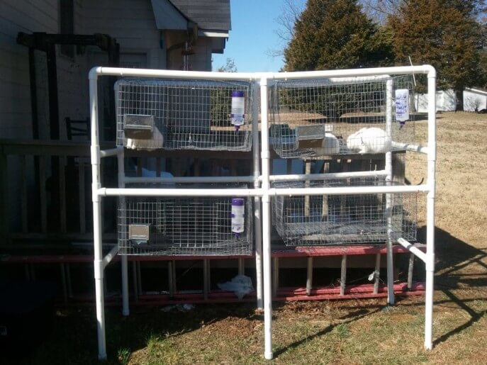 PVC Rabbit Hutch