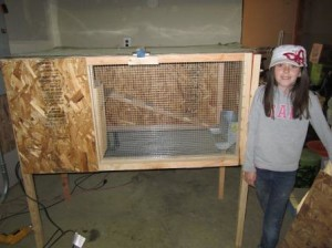 wooden rabbit hutch plans