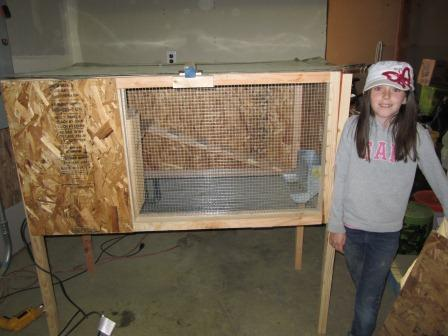 Wooden rabbit hutch plans - How to make a rabbit cage ...