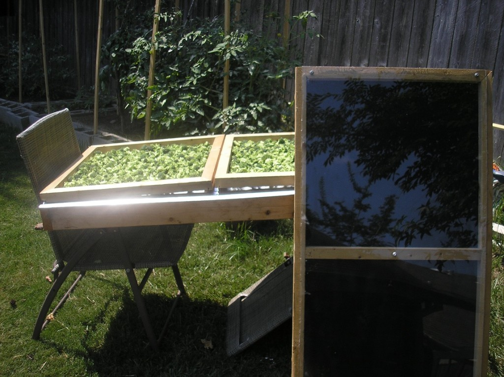 Workable solar dryer plan
