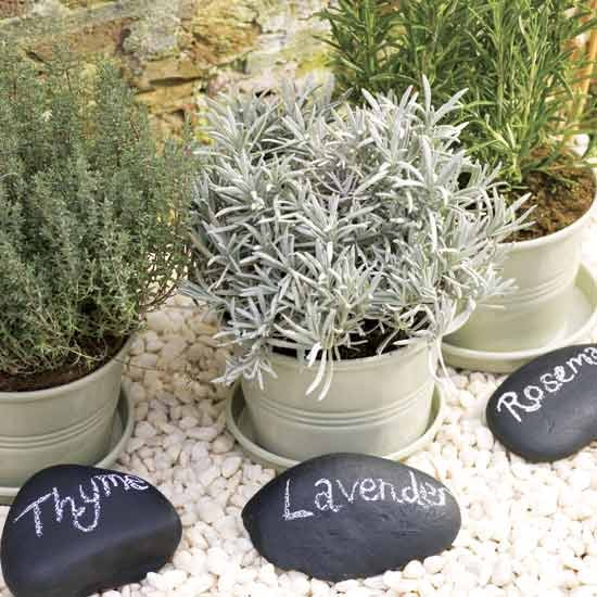 Paint pebble plant markers