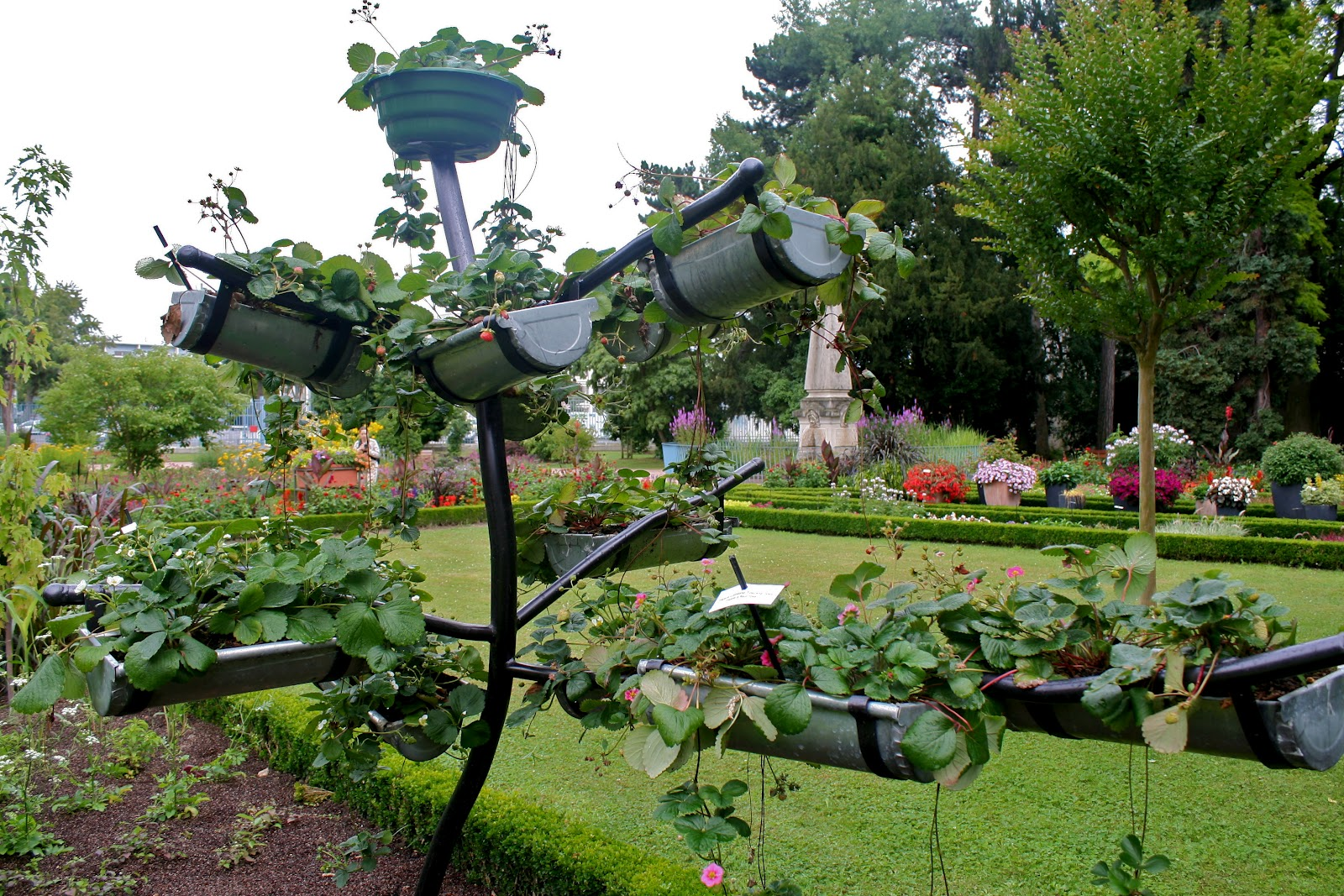 13 Creative and Innovative rain Gutter Garden Ideas – The Self ...