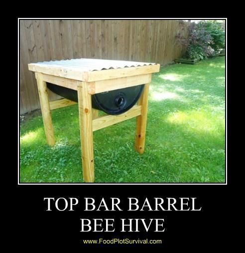 Top Bar Barrel Bee Hive by Food Plot Survival