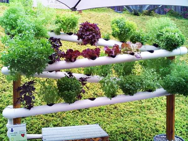 13 Creative And Innovative Rain Gutter Garden Ideas The