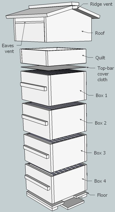 10 Free Langstroth and Warre or Top bar Beehive Plans ...