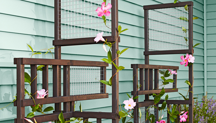 15 inspiring diy trellis ideas for growing climbing plants for Wall trellis ideas