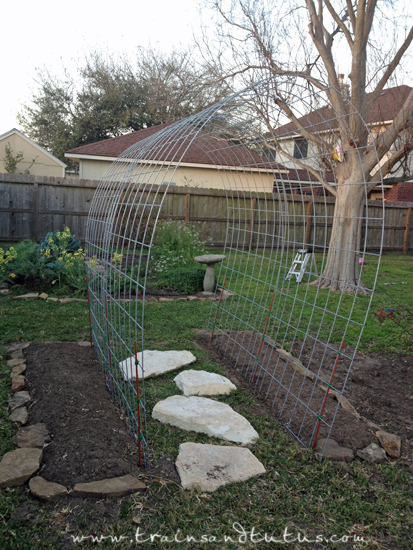Pea and cucumber trellis ideas