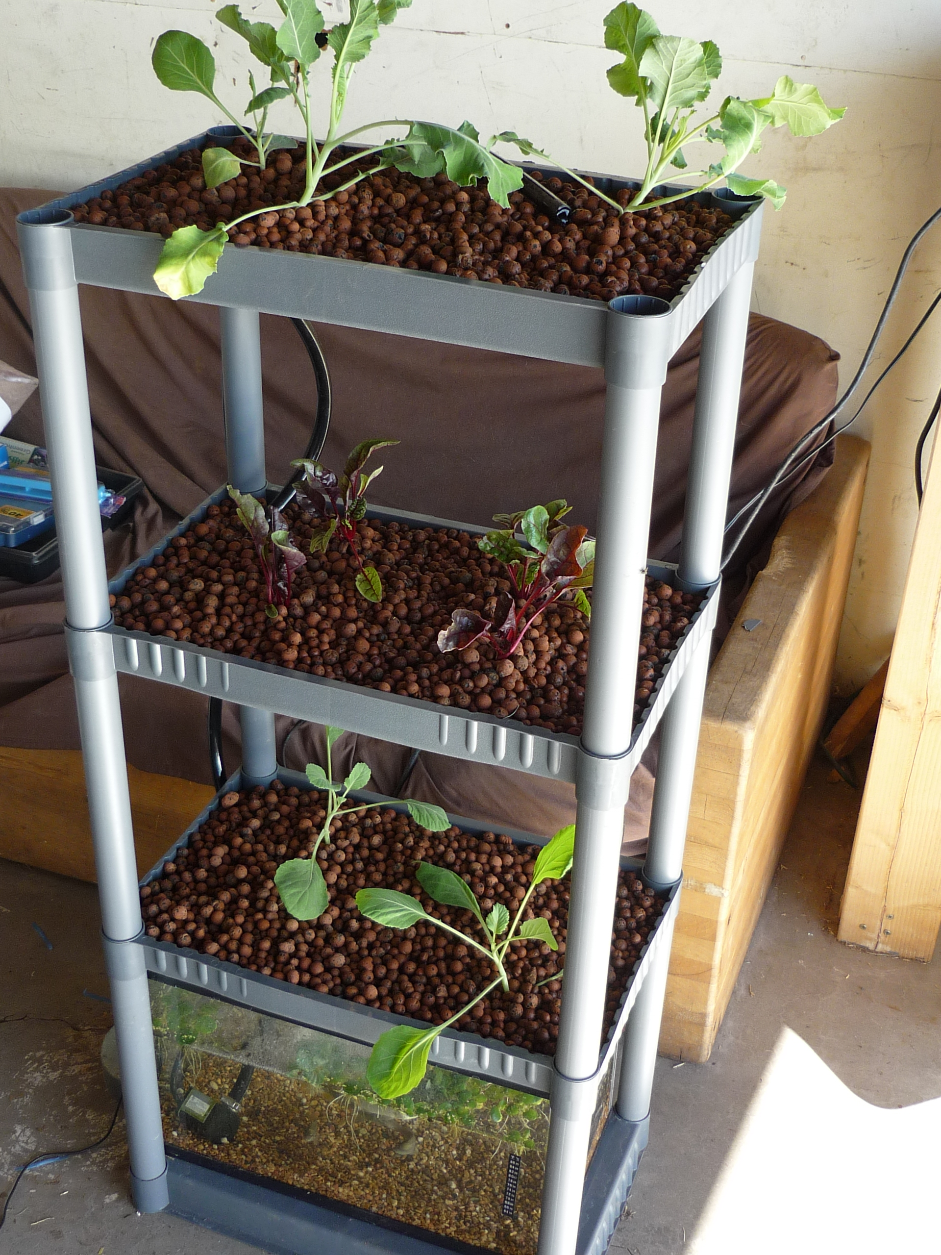 12 DIY Aquaponics System For Indoor And Backyard The  : Sexy shelfponics from theselfsufficientliving.com size 1920 x 2560 jpeg 2291kB