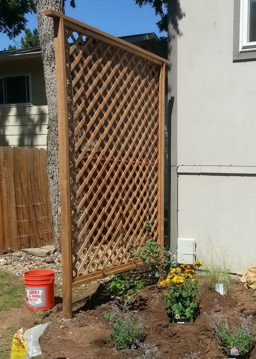 Simple backyard Cedar trellis