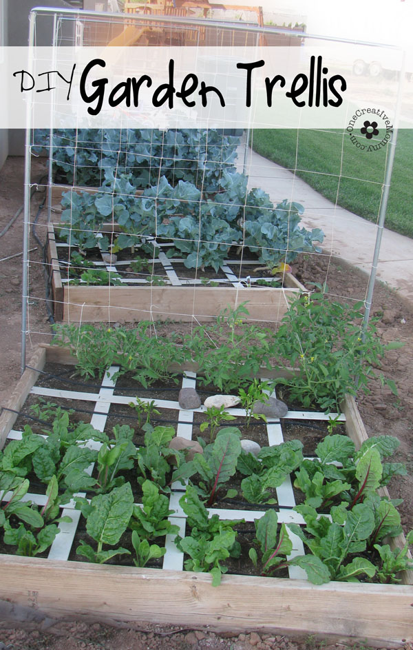 Trellis Gardening Ideas Part - 49: Squash And Melon Trellis