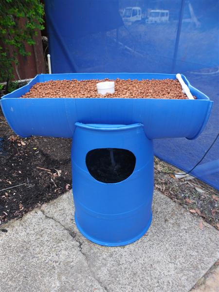 Two barrel aquaponic