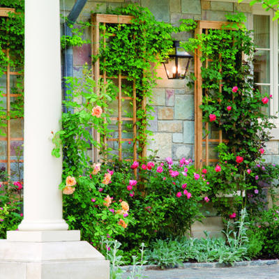 15 inspiring diy garden trellis ideas for growing climbing for Wall trellis ideas