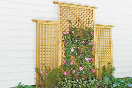 Weekend trellis plan
