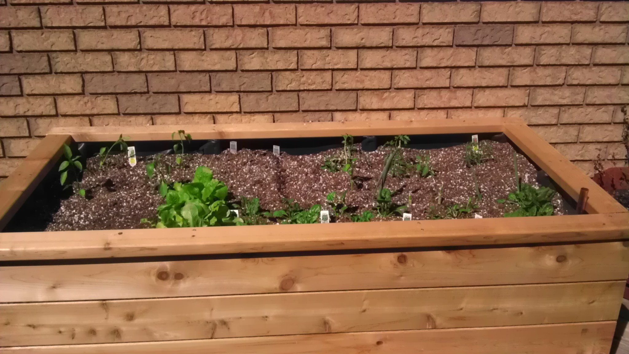 Homemade wooden planter