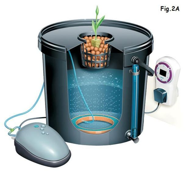 Indoor DWC Hydroponics Systems