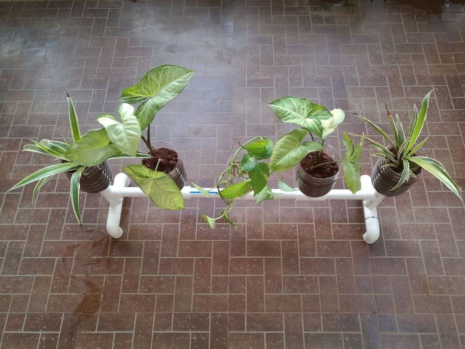 self watering plant stand
