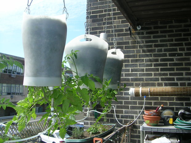 Upside down hanged water system