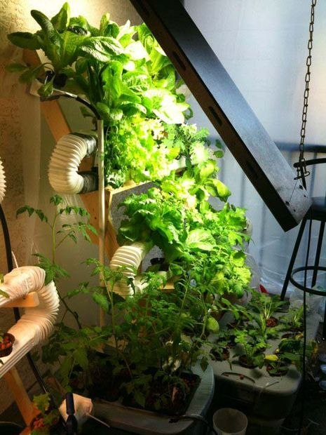 Vertical Hydroponic Gardening System