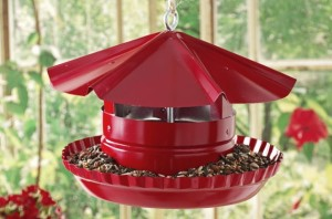 Pie Tin DIY Bird-Feeder