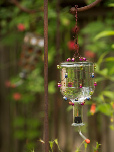 Tequila Bottle Hummingbird-Feeder