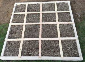 Creating DIY garden beds