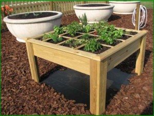 Elevated square foot gardening