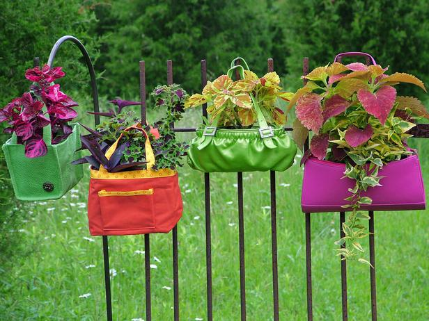 Hang bags an Economical way to Container Gardening