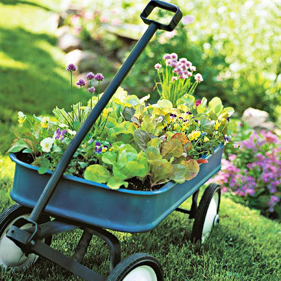Image result for weird gardening containers