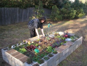 Square foot gardening without wood