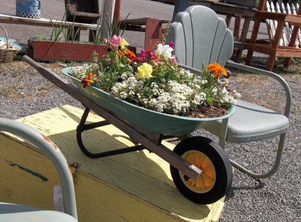 Toy Wheelbarrow for Container Gardening