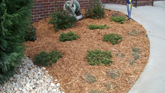 Wood Chips For Landscaping ~ Types of garden mulch choose the right one for your