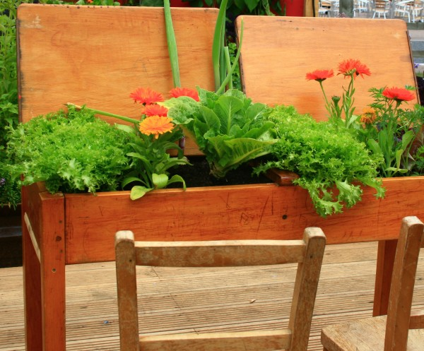 Wooden School Desk for Container Garden