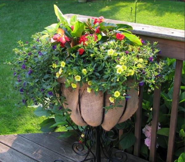 rustic stand as a container