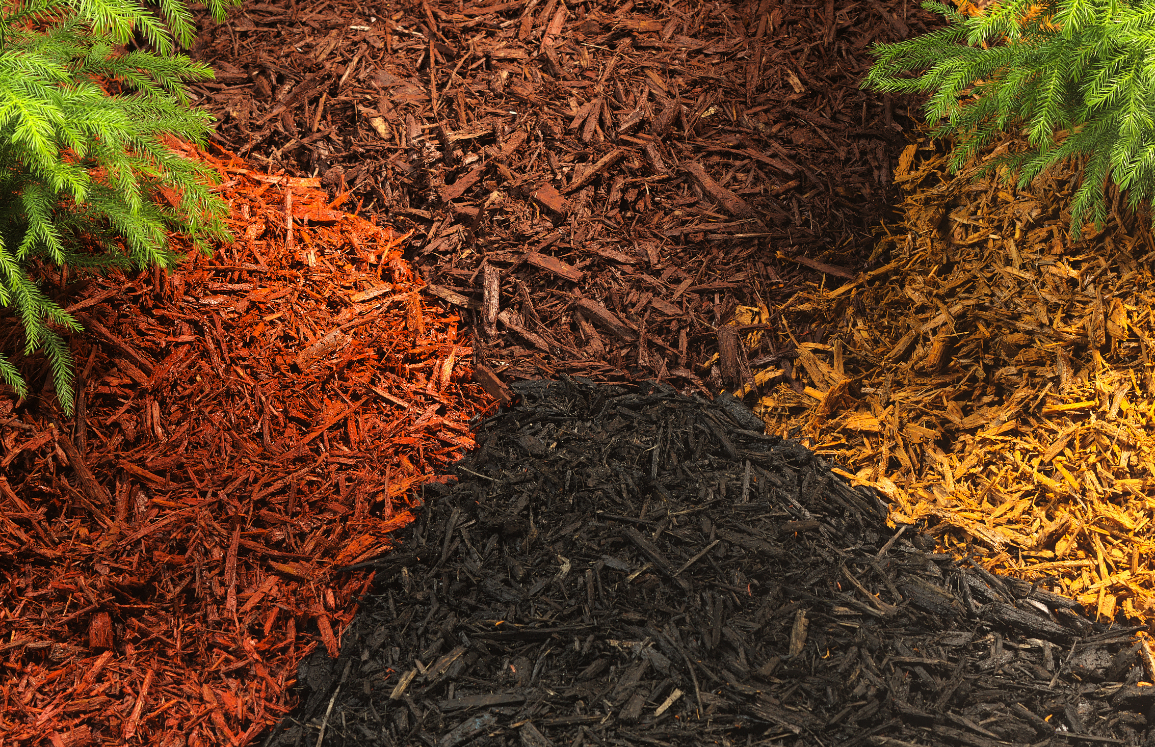 10 Types of Mulch- Choose the Right One for Your Landscape – The ...