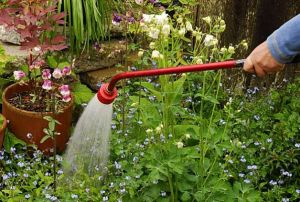Garden hose with a watering wand