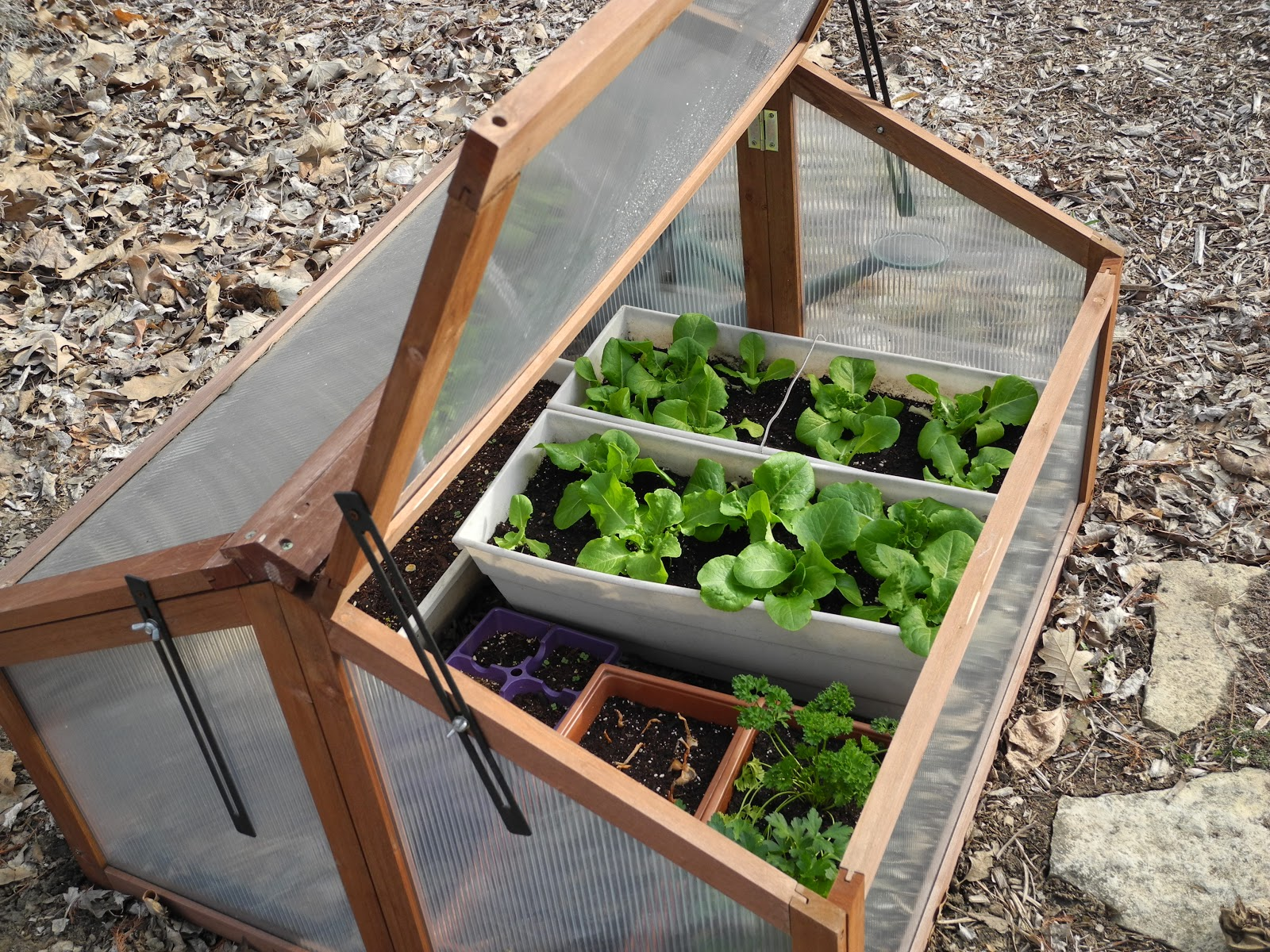 Guide To Cold frame Gardening- Learn How To Get Started – The Self ...