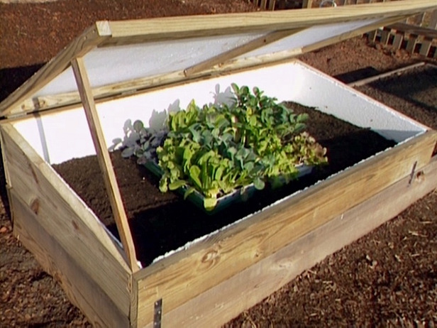 The DIY Network's Cold Frame Plans